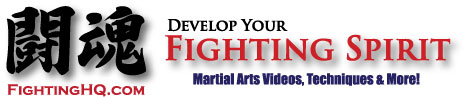 Martial Arts Styles & Fighting Techniques